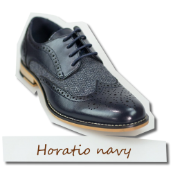 Horatio navy