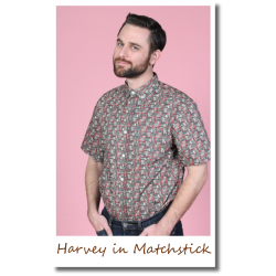 Harvey in Matchstick