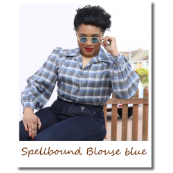 Blue Check Spellbound Blouse